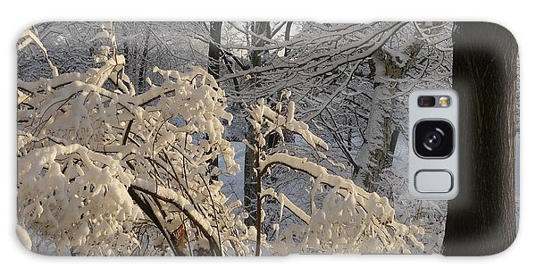 Sun On Snow Covered Branches Galaxy Case