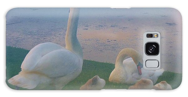 Sun Setting On Swan Family Galaxy Case by Jeanette Oberholtzer
