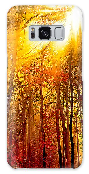 Sunburst In The Forest Galaxy Case by Randall Branham
