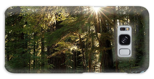 Ecosystem Galaxy Case - Sunburst In The Rainforest, Olympic by Art Wolfe