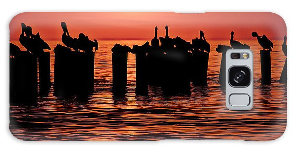Sundown With Pelicans Galaxy Case