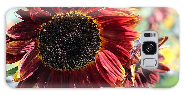 Sunflower 15 Galaxy Case