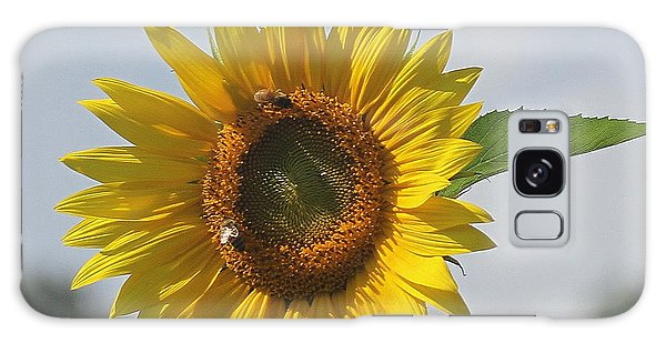 Conyers Galaxy Case - Sunflower 5 by Cathy Lindsey