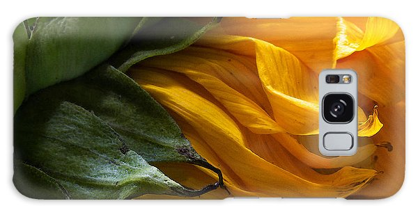Sunflower 5 Galaxy Case by Mary Bedy