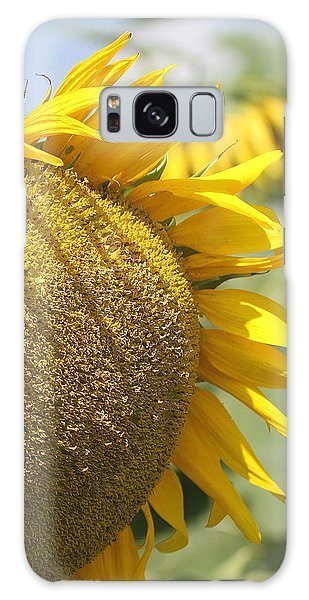 Conyers Galaxy Case - Sunflower 8 by Cathy Lindsey