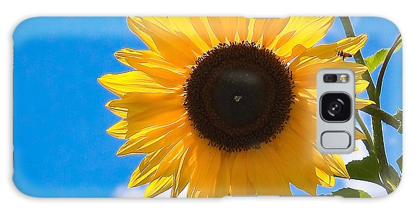 Sunflower And Bee At Work Galaxy Case