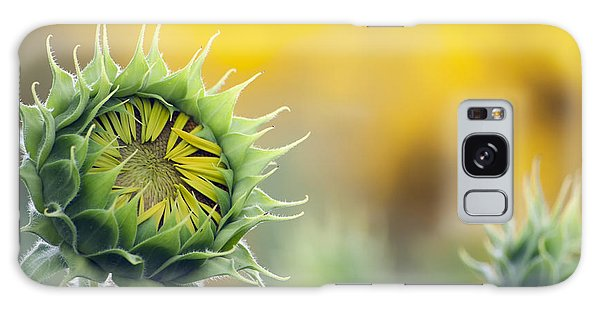 Sunflower Bloom Galaxy Case