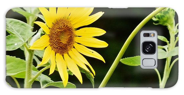 Sunflower Cheer Galaxy Case by VLee Watson