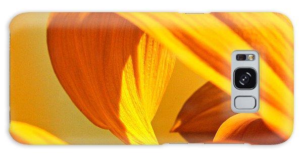 Sunflower Curve Galaxy Case