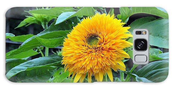 Sunflower Drama Galaxy Case by Teresa Schomig