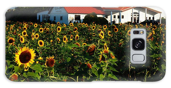 Sunflower Field At Winery Galaxy Case by James Kirkikis