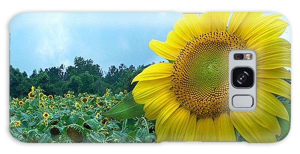 Sunflower Field Of Yellow Sunflowers By Jan Marvin Studios  Galaxy Case