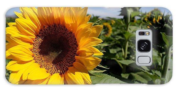 Sunflower Glow Galaxy Case