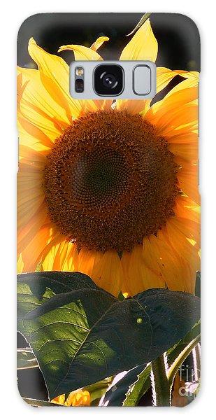 Sunflower - Golden Glory Galaxy Case