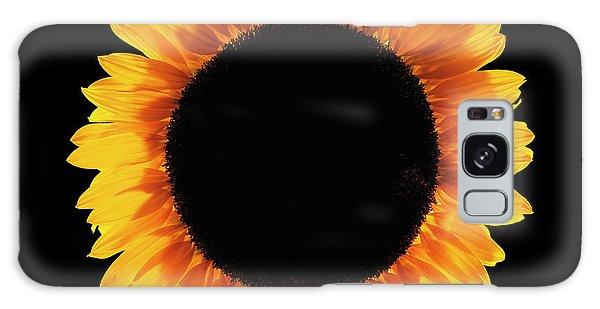 Helianthus Annuus Galaxy Case - Sunflower (helianthus Annuus) by Gilles Mermet