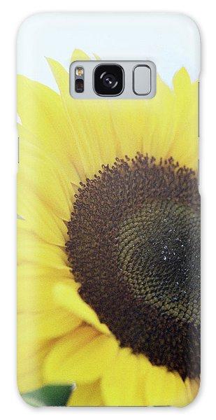 Helianthus Annuus Galaxy Case - Sunflower (helianthus Annuus) by Rachel Warne/science Photo Library