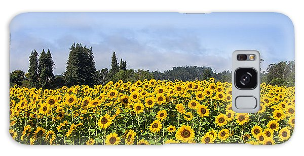 Sunflower Horizon Galaxy Case