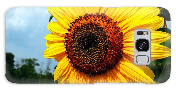 Sunflower In Summer Galaxy Case