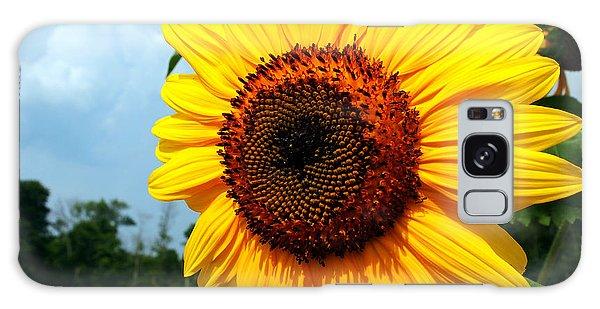 Sunflower In Summer Galaxy Case
