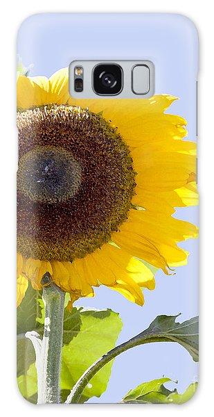 Sunflower In The Blue Sky Galaxy Case by David Millenheft