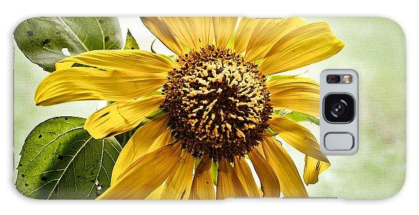 Sunflower In Window Galaxy Case