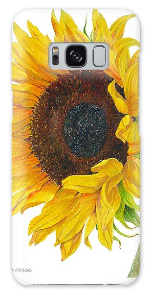 Sunflower - Helianthus Annuus Galaxy Case