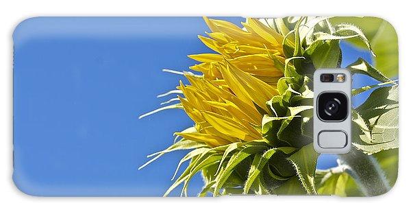 Sunflower Galaxy Case by Linda Bianic