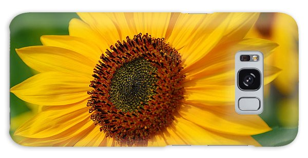 Sunflower Galaxy Case by Michele Wright