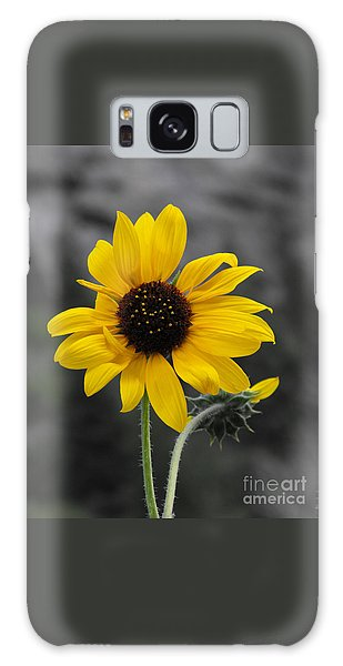 Sunflower On Gray Galaxy Case by Rebecca Margraf