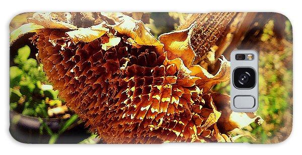 Sunflower Seedless 1 Galaxy Case by James Aiken
