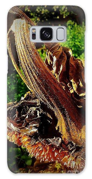 Sunflower Seedless 2 Galaxy Case by James Aiken