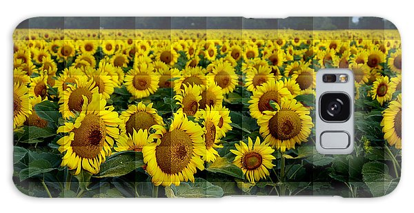 Sunflower Squared Galaxy Case