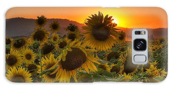 Sunflower Sun Rays Galaxy Case