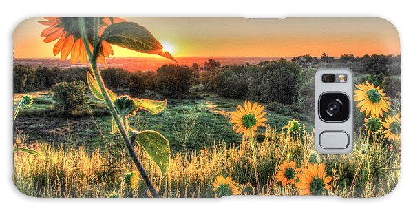 Sunflower Sunrise 1 Galaxy Case by Diane Alexander