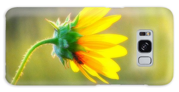 Sunflower Sunrise 6 Galaxy Case by Diane Alexander