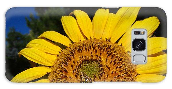 Sunflower Visitor Series 4 Galaxy Case