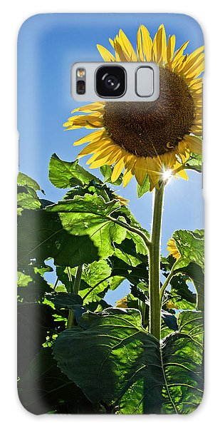 Sunflower With Sun Galaxy Case
