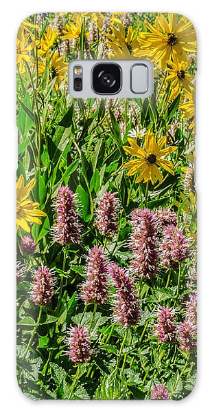 Sunflowers And Horsemint Galaxy Case