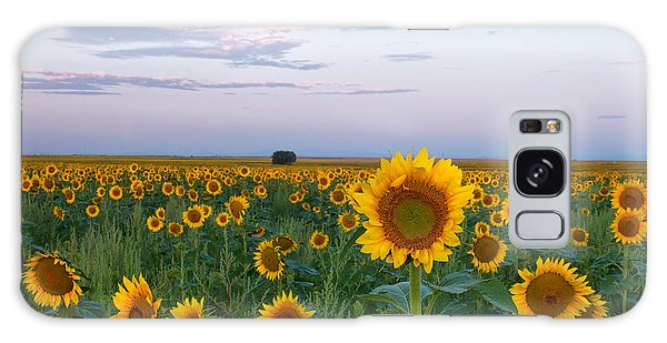 Sunflowers At Sunrise Galaxy Case