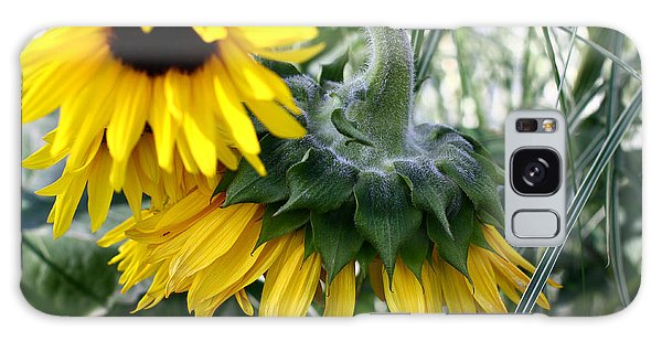 Sunflowers Galaxy Case by Denise Pohl