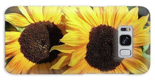 Helianthus Annuus Galaxy Case - Sunflowers (helianthus Annuus) by D C Robinson