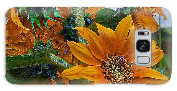 Sunflowers In A Bunch Galaxy Case by John  Kolenberg