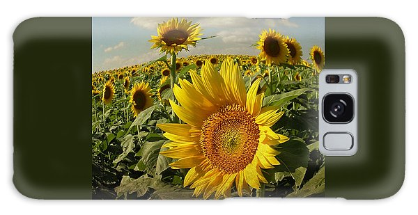 Kansas Sunflowers Galaxy Case by Chris Berry