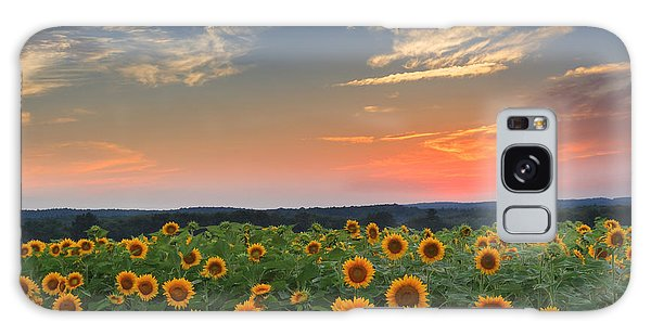 Sunflowers In The Evening Galaxy Case