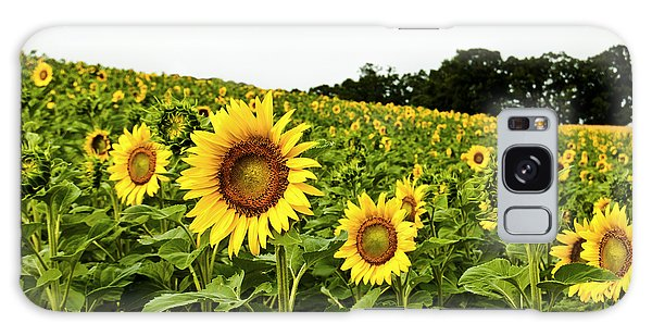 Sunflowers On A Hill Galaxy Case