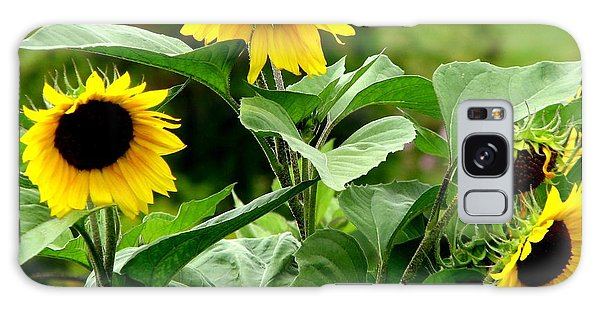 Galaxy Case featuring the photograph Sunflowers by Rose Santuci-Sofranko