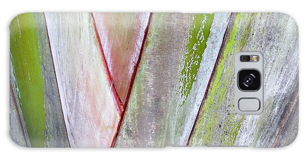 Sunken Gardens Abstract 4 Galaxy Case by Maria Huntley