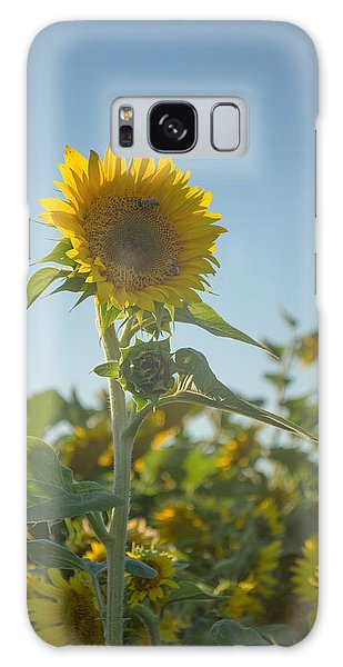 Sunlight And Sunflower2 Galaxy Case