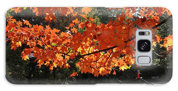 Sunlight On Red Maple Leaves Galaxy Case