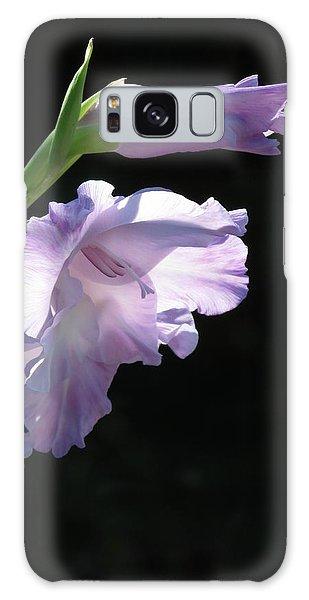 Sunlit Gladiolus In Violet   Galaxy Case